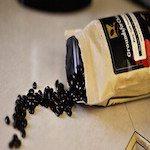 Elizabeth Banks' Whohaha-Coffee